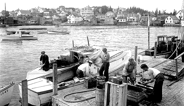 old photo of Maine lobster men weighing their catch.
