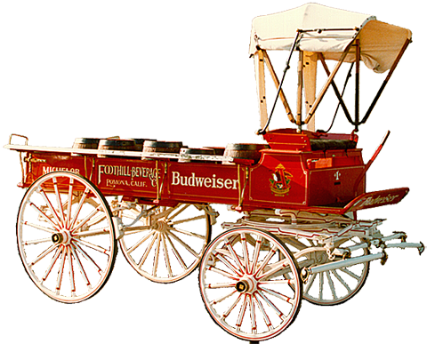 Lettering and stripes on a small Budweiser parade wagon.